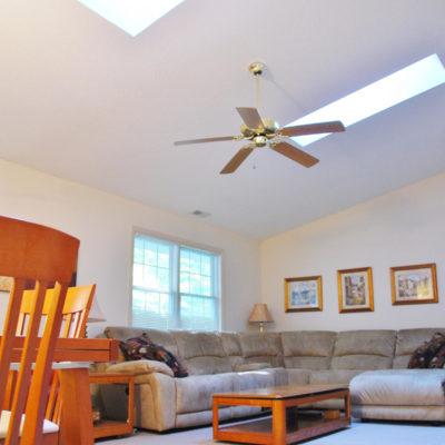 Vaulted Ceiling & Skylights